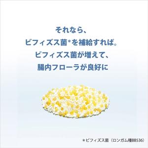 森下仁丹 ヘルスエイド(R) ビフィーナS(スーパー)30日分(30袋)[機能性表示食品]