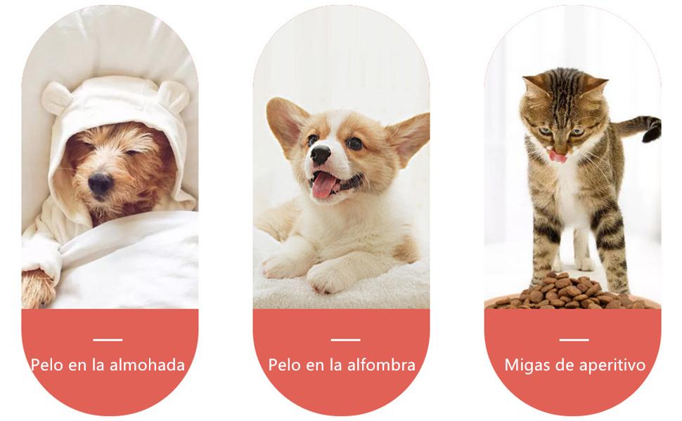 Yolistar Quitapelos y Rodillos para Mascotas, Cepillo de Limpieza Removedor de Pelaje para Perro y Gato, Mágico Depilación Eliminador de Pelo para Animales, para Limpiar Textil: Amazon.es: Productos para mascotas