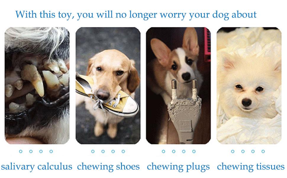 Help Dog Grind And Clean Teeth