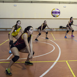 volleyball volleyball beach volleyball indoor indoor volleyball official size volleyball