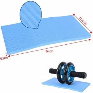 ab roller for gym