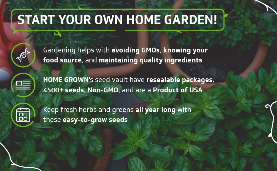 start your own home garden