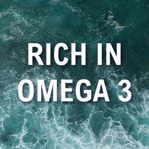 rich in omega 3