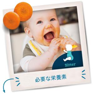 2nd Foods(セカンドフーズ) - 赤ちゃんの成長段階に合わせて作られています