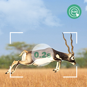 wildlife camera wifi