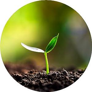 Terreau Naturel pour la Construction et Lam/élioration des Plantes pour la Germination en Pot Baltic Worm L/'Humus de vers 1 x 1.5 litres Engrais Universels Vermicompost Organique Pur