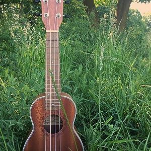 sapele ukulele