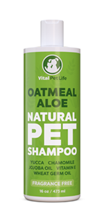 16oz Oatmeal Aloe Dog and Cat Shampoo