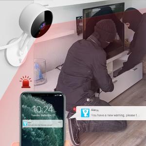 Real-time Human Detection Alert