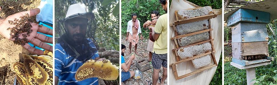 bee farm savayav pure honey natural organic