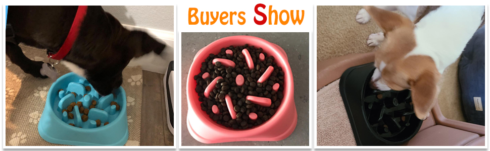 buyer show about the slow eating dog bowls