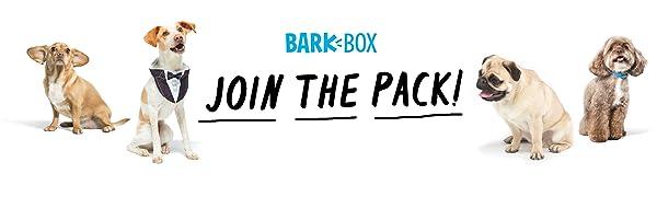 barkbox, dog chews, dog treats, dog toys