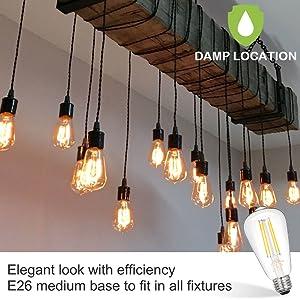 damp rated edison bulb