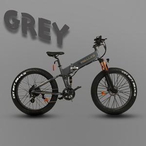 WALLKE X3 Por GREY