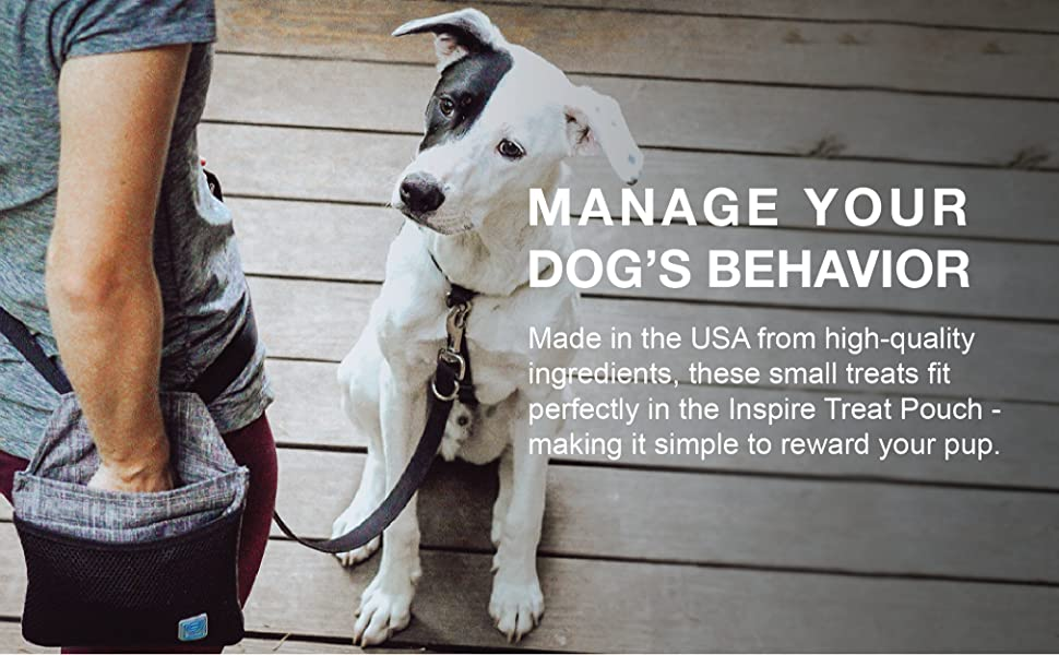 manage your dog's behavior