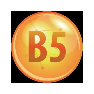 PROVITAMIN B5 SHAMPOO