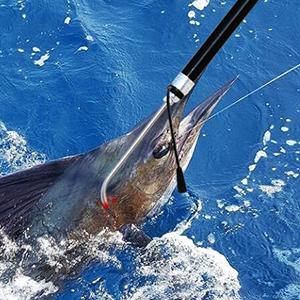 Fishing gaff hook