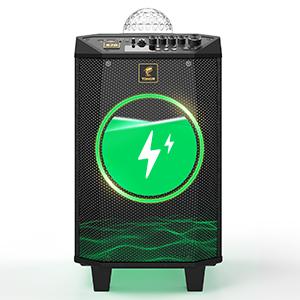 karaoke machine with 2 wireless microphone