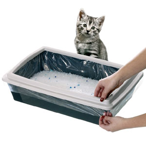 Migliori 7 Antiodori per gatti