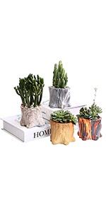 Natural Style Flower Pot Tree Stump Planter