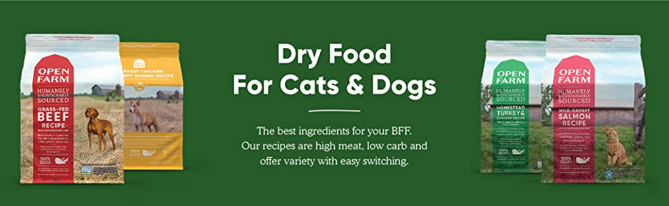 dry food cats and dogs