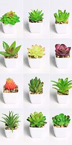 artificial succulents plants in pot