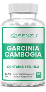 Garcinia Cambogia Extract 95% HCA Weight Loss PIlls Appetite Suppressant Men Women Fat Burn graisse