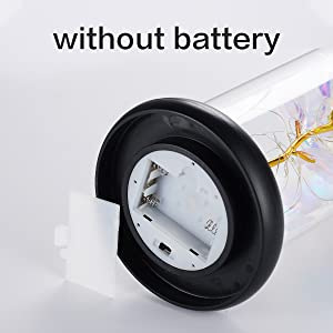 Without Battery