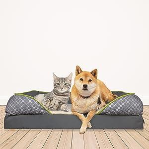 dog cat bed together friends comfortable sleeping mattress memory foam good