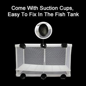 fish breeder box