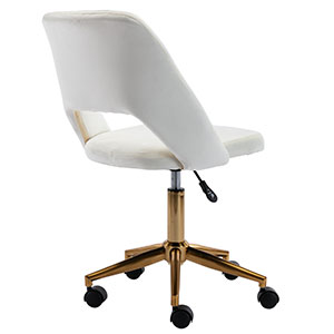 Desk Chair for Kids Teens Small Office Computer Student Chair No Arms Low Back