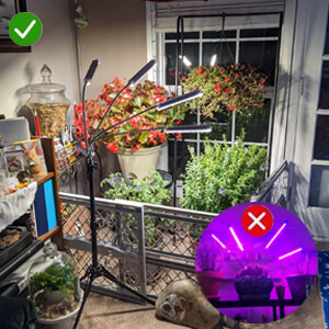 plant lights for indoor plants full spectrum