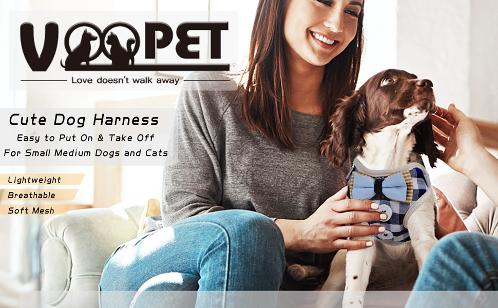 easy to put on and take off dog harness