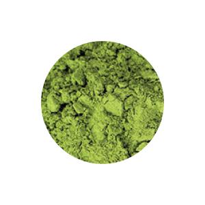 salicylic acid foaming cleaner exfoliator natural beauty moisturizer green tea extract