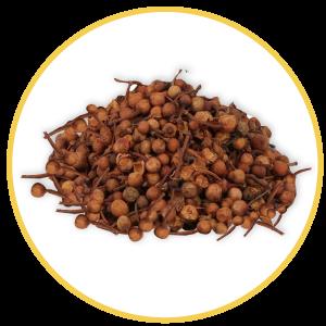 Herbopile Ingredient: Nagkesar