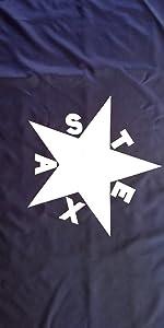texas lorenzo de zavala flag
