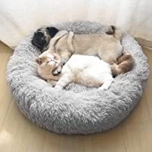 cat and dog sleep in the donut  bed
