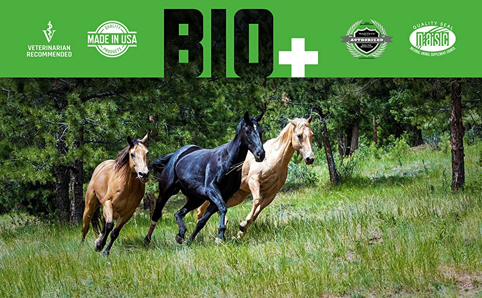 Majesty's Biotin+ Horse Wafers, Veterinarian Recommended, Made in USA, Authorized Majesty's Dealer
