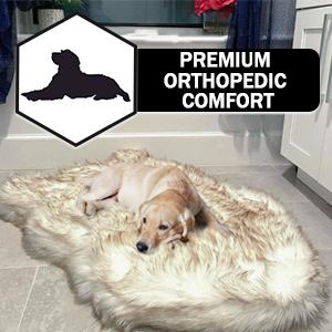 iHappyDog Luxury Memory Foam Dog Bed for Medium Large and XL Pets Orthopedic Extra Soft Multiple Sizes, Bone White Waterproof with Washable Faux Fur Cover