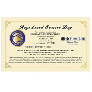 Amazon Com Registered Service Dog Certificate Customized With Your Name Your Dogs Name And Certification Number And Date Free Duplicate Copy And Registration Into Our National Registry Of Service Dogs