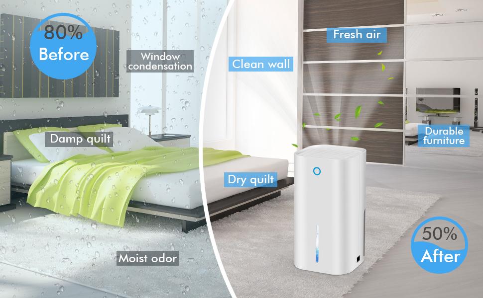 dehumidifiers for bedroom