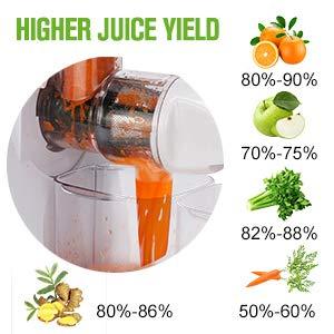Koios B5100 Masticating Juicer-juice yield