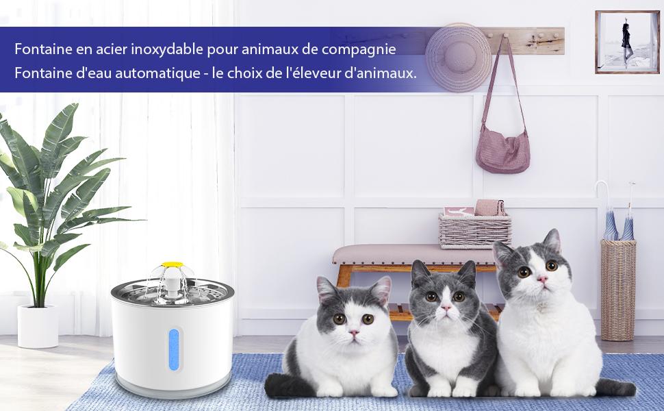 Fontaine pour chat et chien