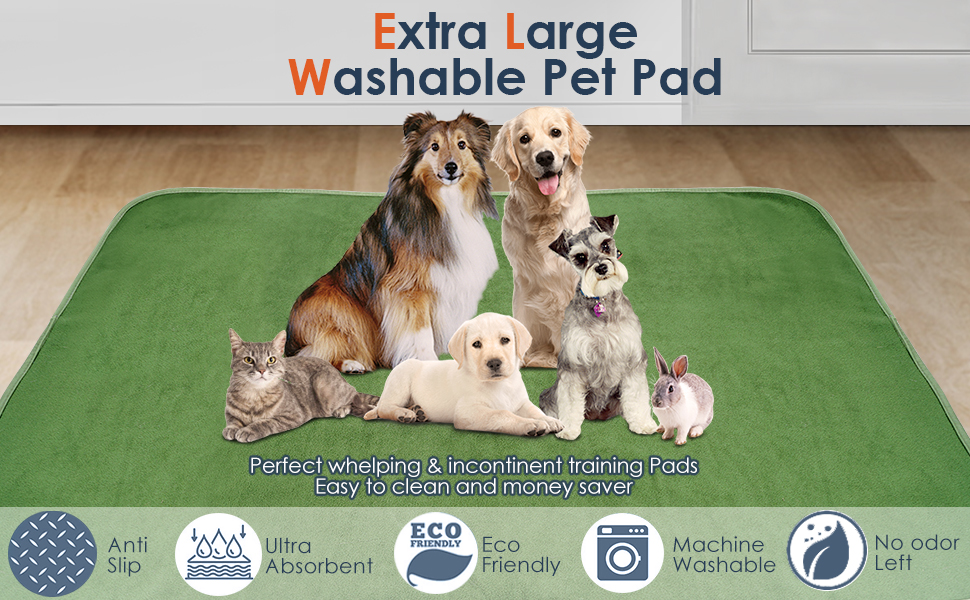 washable pee pad