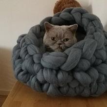 Make a pet nest