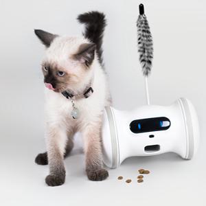 VARRAM Pet Fitness Cat Accessory