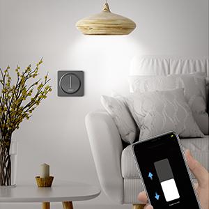 WLAN dimmer schakelaar dimbare schakelaar wifi lichtschakelaar LED dimbare lichtschakelaar Smart schakelaar