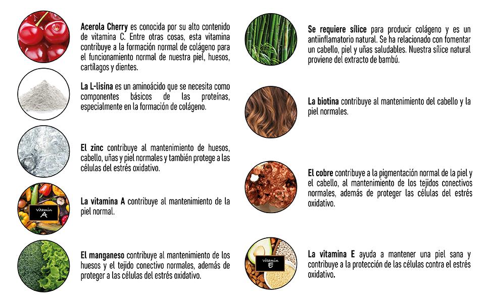 Suplemento De Colágeno Vegano Con Biotina, Liosina, Sílice De Bambú, Zinc, Vitamina C, E, YA Para Piel, Pelo, Uñas, Articulaciones Y Huesos   ...
