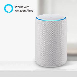 Smart Alexa Lampe