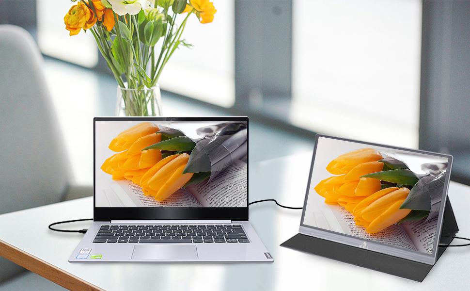 NexiGo Portable Monitor
